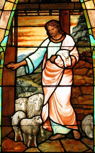 The Good Shepherd, stained glass,courtesy of Merkel United Methodist Church.