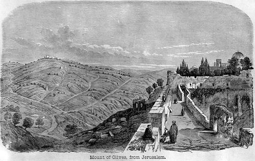 Mount of Olives from Jerusalem. Click to enlarge.
